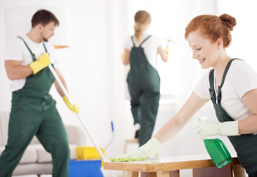cleaning-service-during-work-PPTAZG5